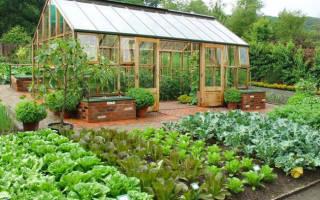 Приусадебный участок сад огород планировка