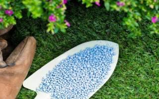 Селитра удобрение применение на огороде