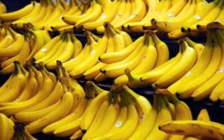 Где растет банановое дерево