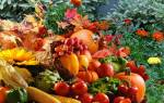 Нужно ли перекапывать огород осенью