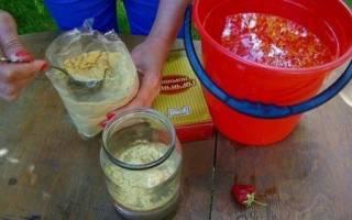 Горчица для огорода как применять