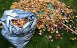 Мульчирование листьями осенью