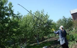 Опрыскиватели для высоких деревьев с длинной штангой