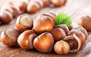 Как вырастить орешник из ореха