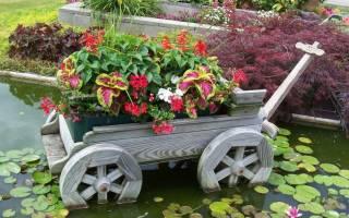 Обустройство сада и ландшафтный дизайн своими руками