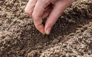 Монофосфат калия состав удобрения