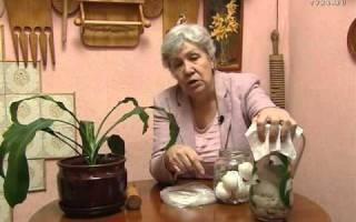 Как использовать яичную скорлупу в качестве удобрения