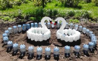 Как можно использовать пластиковые бутылки на даче