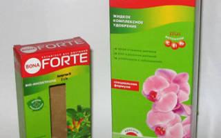 Удобрение forte для всех комнатных растений инструкция