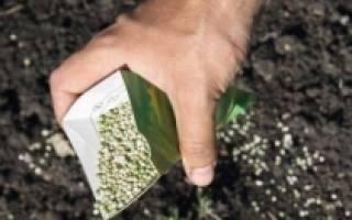 Как улучшить землю в теплице