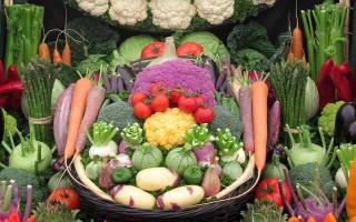 Схема посадки овощей на огороде таблица