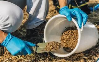 Гранулированный куриный помет как удобрение как применять