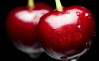 На какой год плодоносит черешня после посадки