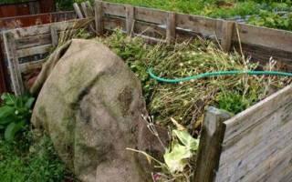 Компостная куча органическое удобрение своими руками