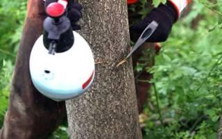 Средство для уничтожения корней деревьев